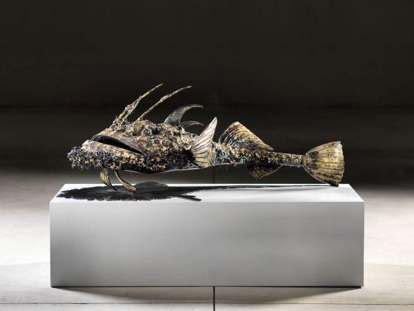 Isaia Zilli - Monkfish